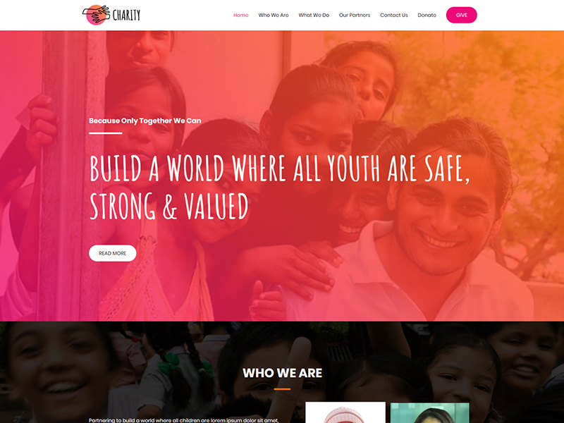 Charity – 服务机构模板WordPress主题