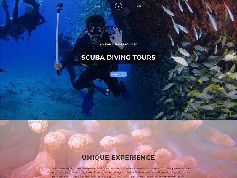 Scuba – 运动户外模板WordPress主题